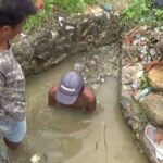 Saluran Air Tersumbat Lima Haktare Tanaman Padi Tergenang