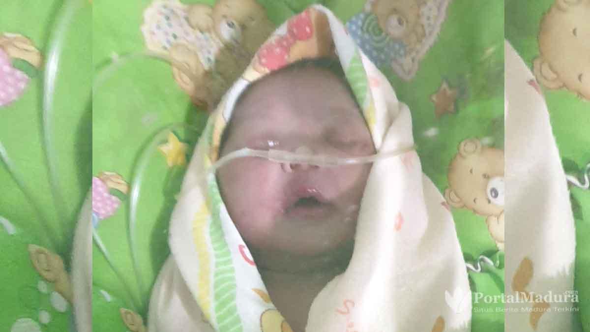 Warga Sumenep Temukan Bayi di Kebun Jati